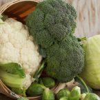 Differenze fra cavolo e broccolo: l'identità confusa di due ortaggi.