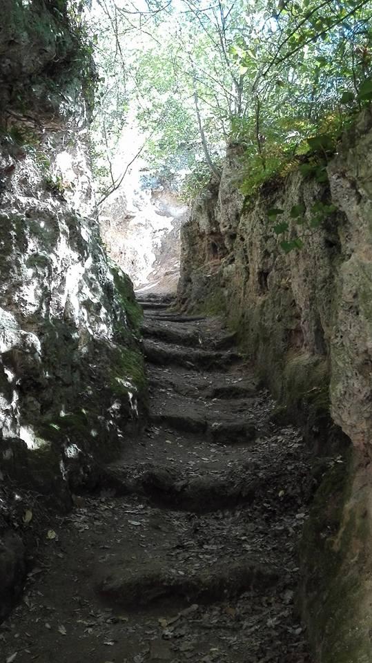 scalette Pale - roccia viva