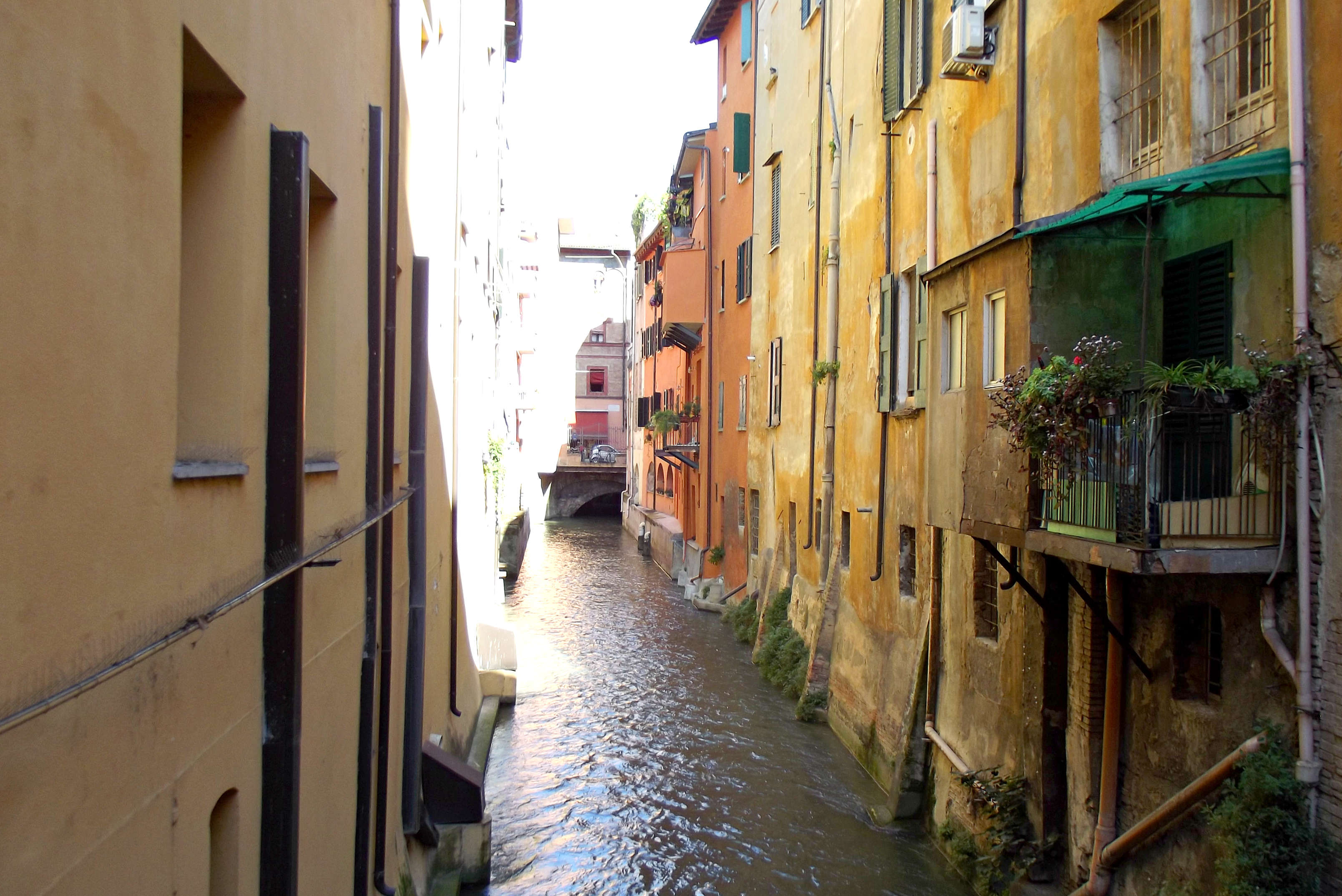 Canale a Bologna